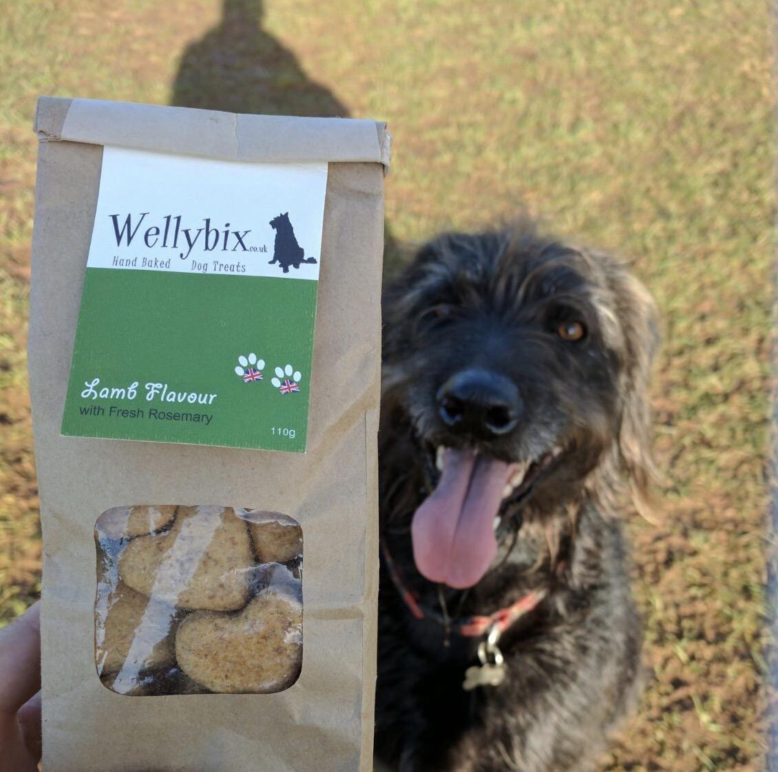 Wellybix, dog treats, Otis Grumbles, Dog Blog